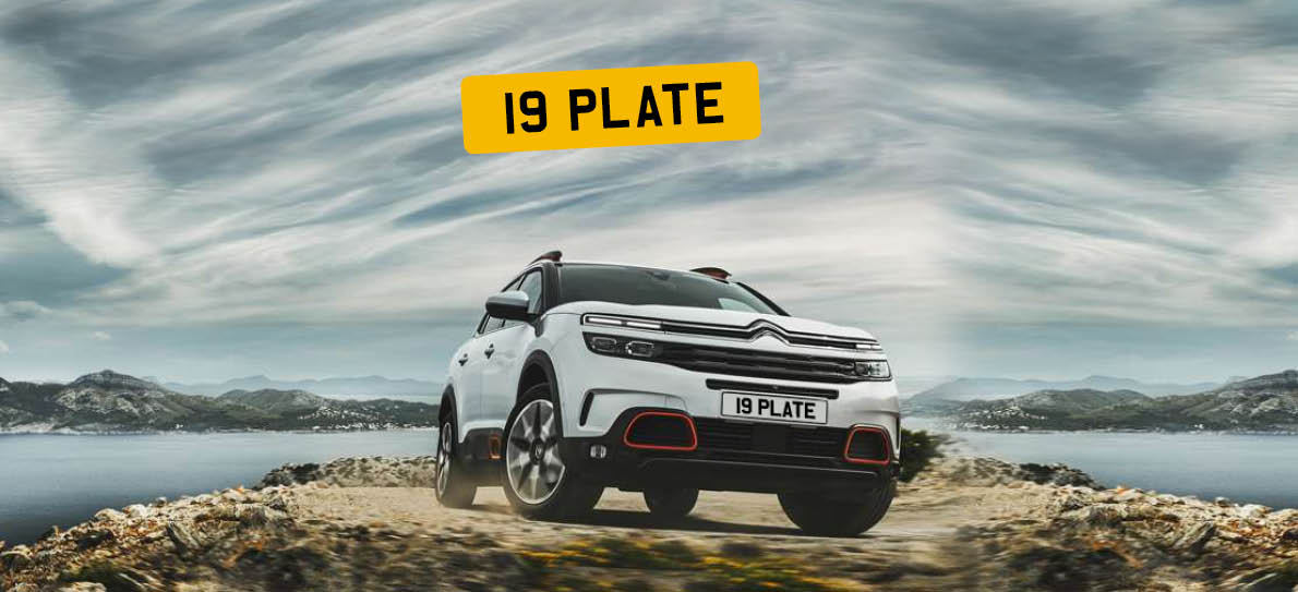 19 Plate
